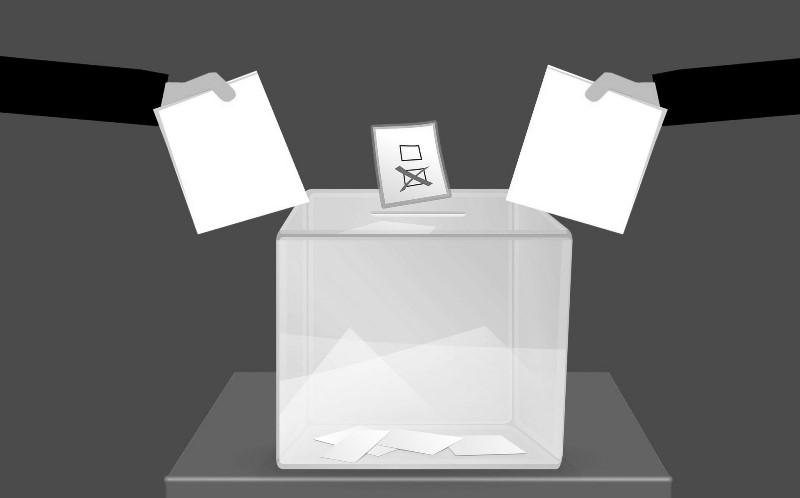 Як проводять референдум