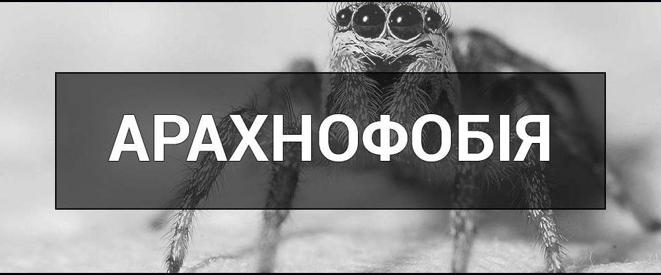 Що таке Арахнофобія - це