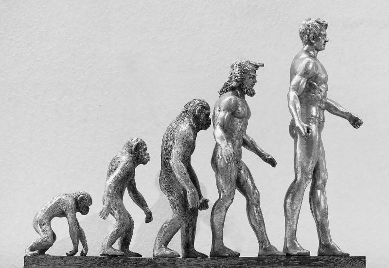 Що таке Теїстична еволюція простими словами